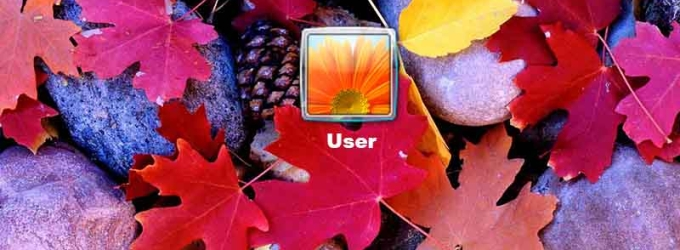 Autumn Leaves Logon Screen
