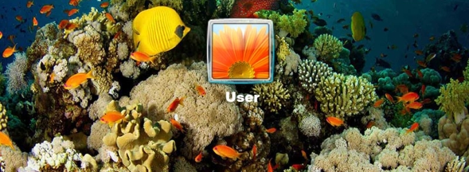 Under The Sea Logon Screen
